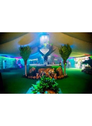 Jungle Grass Bar