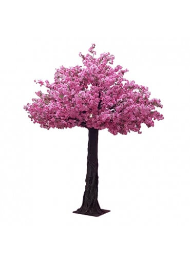 10ft Tall Cherry Blossom Tree Pink
