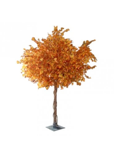 10ft Autumn Tree Hire