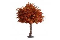 6ft Autumn Tree Hire