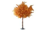 10ft Autumn Tree Hire